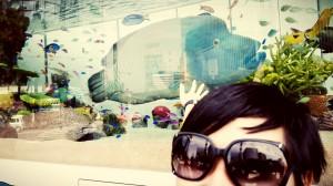 Ikan Napoleon di Sony Aquarium